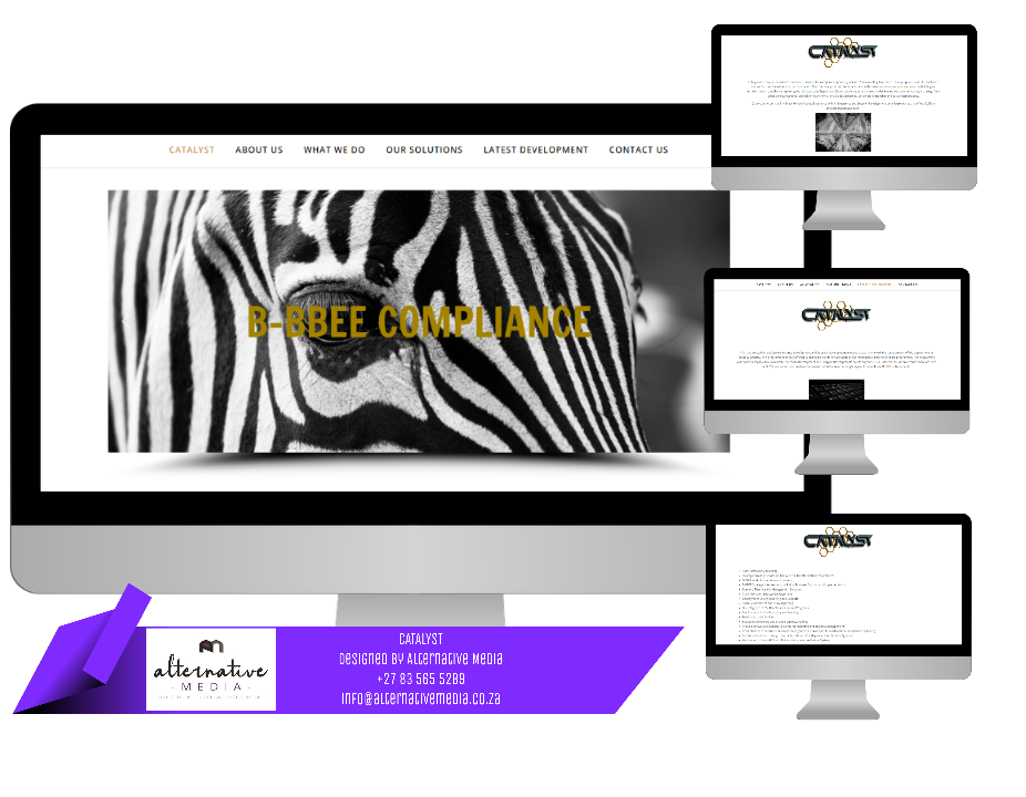 Website Design JHB, combination of CATALYST ADVISORY website screenshots, put together in one design to showcase website.